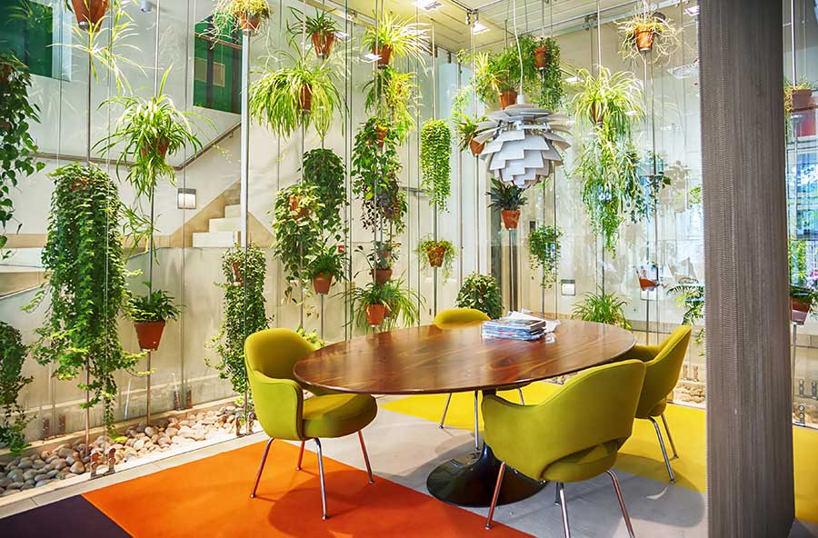 living greenery workspace