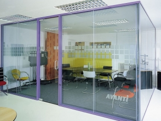 Pivot Frameless Swing Door Gallery 11