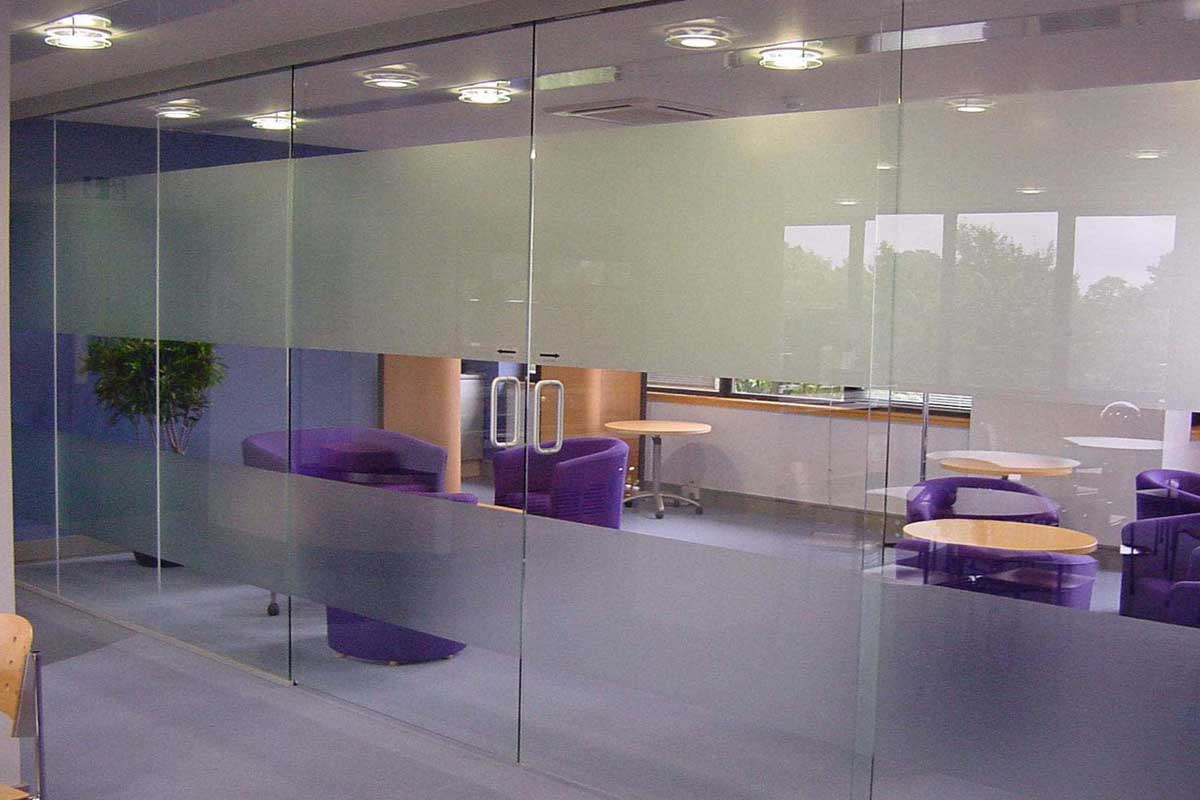 Glass Pocket Doors Gallery 5