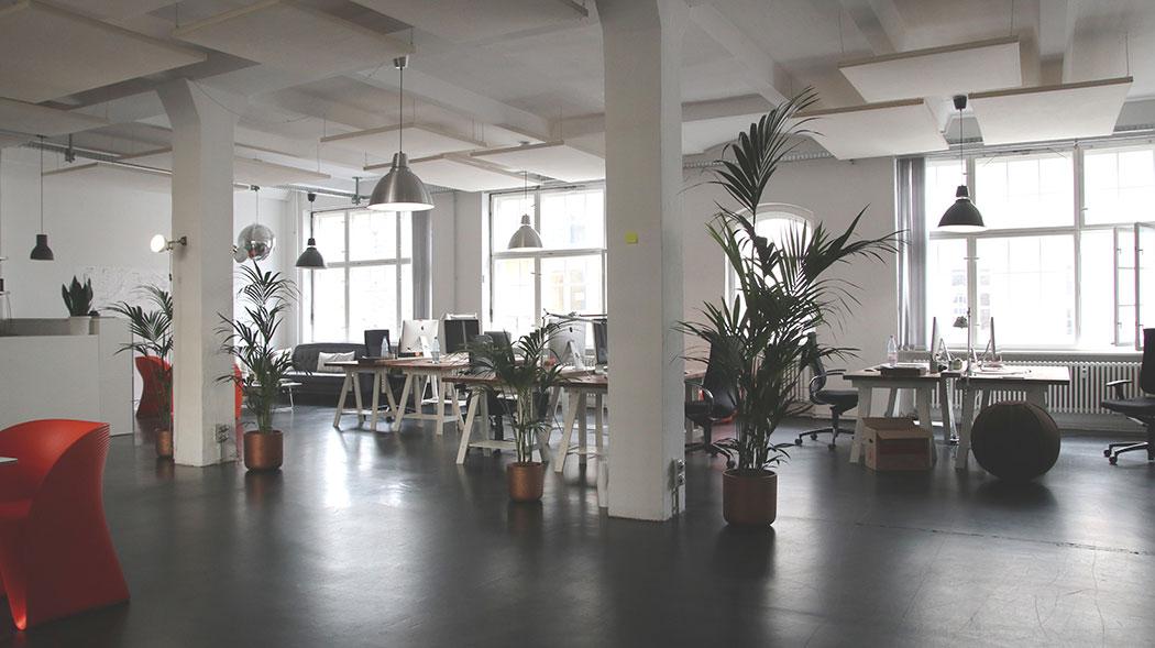 Open office landscape