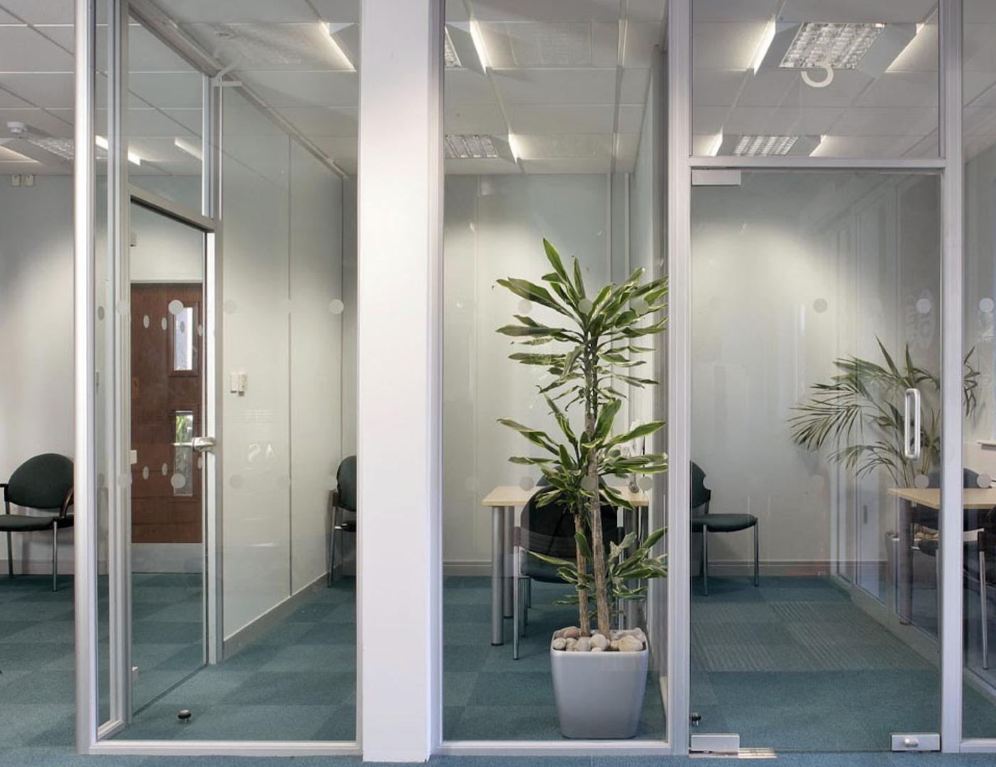 Pivot frameless swing doors create a beautiful office door design
